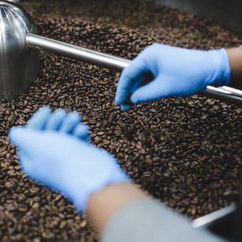 Man selecteert koffiebonen-3