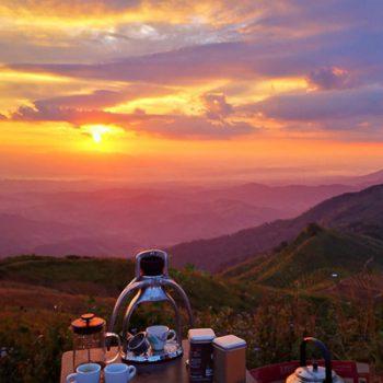 Uitzicht op Thaise koffieverlden - Thai Specialty Coffee