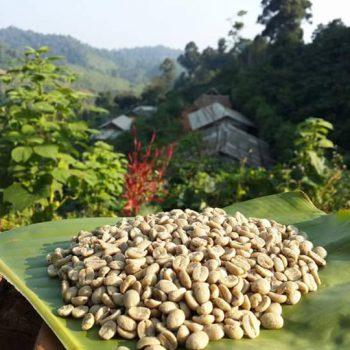 Thai specialty Koffiebonen uit Thainland